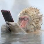 Akıllı Telefon Bağımlılığının 5 Yan Etkisi
